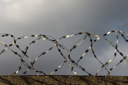 Barbed wire against the grey sky photo