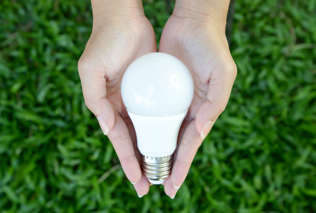 led lamp: LED bulb - energy lighting in our control