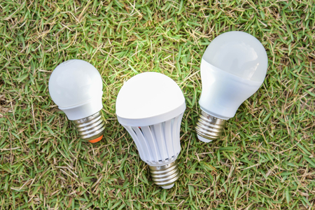 led lighting: LED Bulbs with lighting - on the green grass