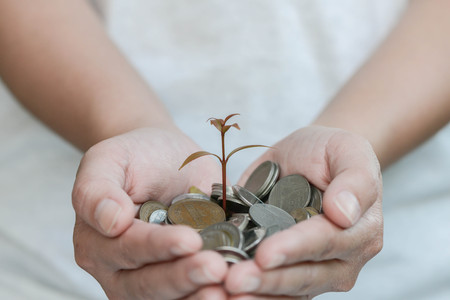 money concept: Plant is growing from saving money in woman hand for saving money concept