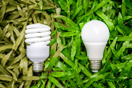 LED and Fluorescent bulb comparing on the green grass and wilt grass for alternative technology concept Stock Photo