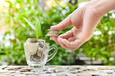 Woman hand putting the coin in the glass with growing plant and sun light for concept of saving money