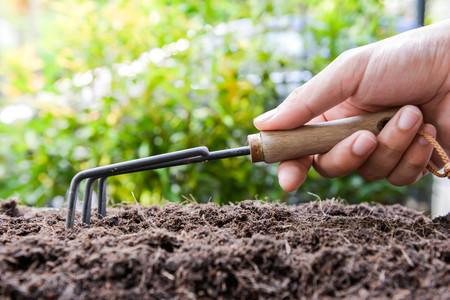 Menschliche Hand hält die Egge, um den Boden zu schaufeln