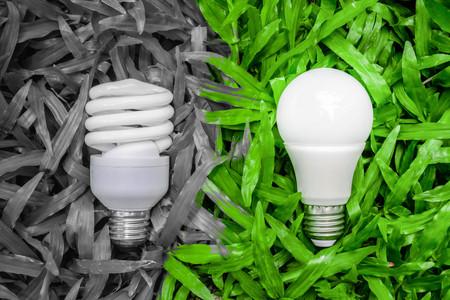 LED y la bombilla fluorescente comparar en la hierba verde para la tecnología alternativa Foto de archivo