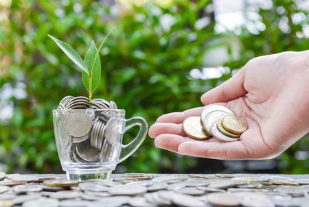 Woman hand putting the coin in the glass with growing plant - Concept of saving money