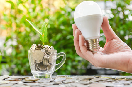 Woman hand is holding LED bulb with growing plant in the glass for concept of saving energy Stock Photo