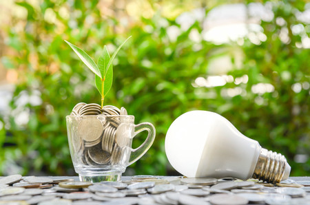 LED bulb with growing plant in the glass and sun light - Concept of saving energy