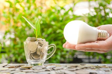 Mano de la mujer es la celebración de bombilla LED con planta en crecimiento en el vidrio y la luz del sol - Concepto de ahorro de energía1