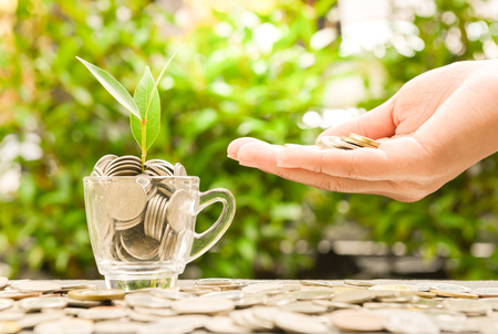 Coin in woman hand and glass with growing plant with sun light - Concept of saving money