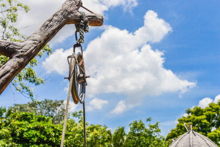 Pulley hanging on a branch 스톡 콘텐츠