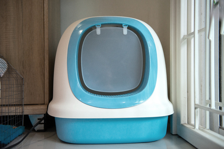 Blue cat toilet on the with door on the floor Stockfoto