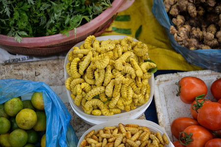 Yellow worm put on sale in Vietnam Standard-Bild - 118982056