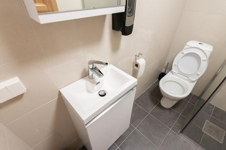 Wnętrze luksusowej toalety ze spłukiwaną toaletą, szkłem i umywalką