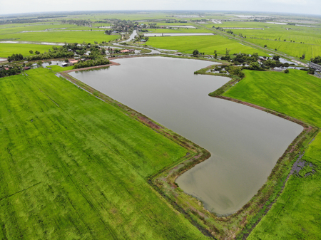Drone photo of rice field and water storage pond