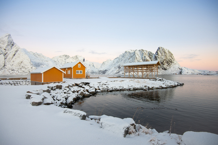 Yellow fishing rorbuer builded from wood and scaffolding dried fish in Reine village at Lofoten Norway