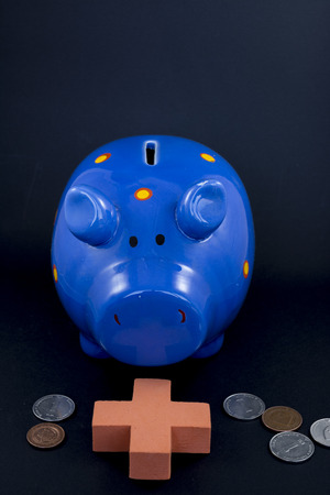 Photographed ceramic piggy bank with banknotes on a black background. photo