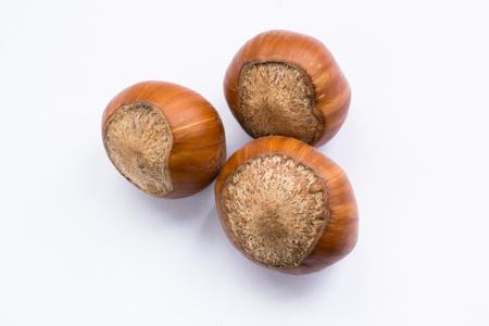 Isolated hazelnuts close up on a white background. Stok Fotoğraf