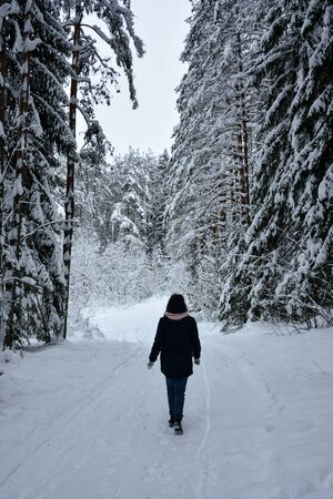 selective focus, Coniferous forest in winter, under a large layer of snow. A girl in a dark coat walks through the snow-covered forest Imagens