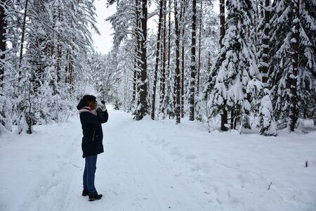 selective focus, Coniferous forest in winter, under a large layer of snow. A girl in a dark coat walks through the snow-covered forest Stock Photo