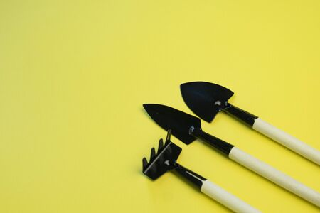 small garden tools for home seed planting, on a bright yellow background, copyspace Stock fotó