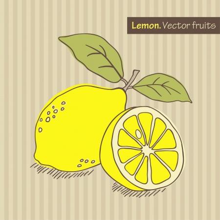 Hand gezeichnet Zitrone. Vector illustration