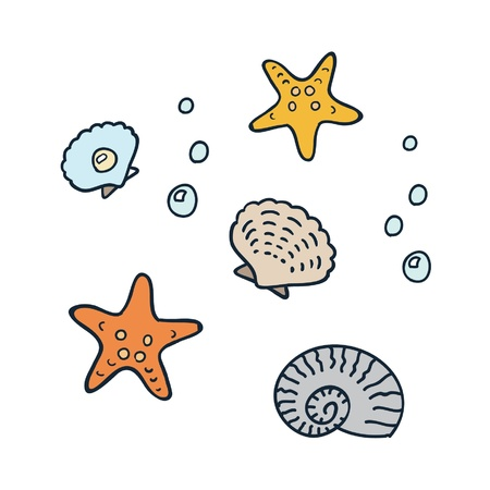 cockle:  ocean elements