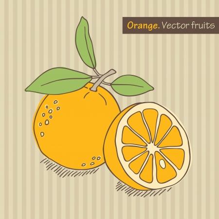 hand drawn orange on striped background Stock Photo - 15135098