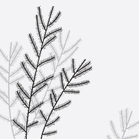 arboles blanco y negro: Elegante árbol de navidad rama Ilustración vectorial Vectores