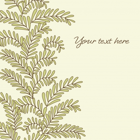 Beautiful background with olive branches  Vector illustration