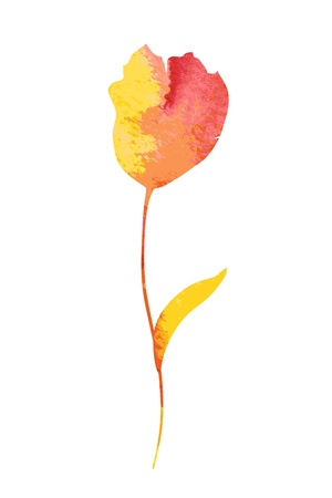 Beautiful watercolor flower. Vector
