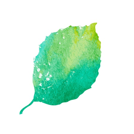 Watercolor green leaf design element.