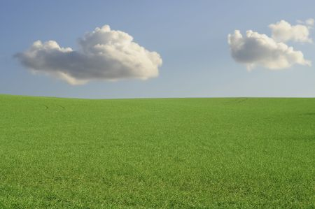 perfect green farmland and blue sky with white clouds photo
