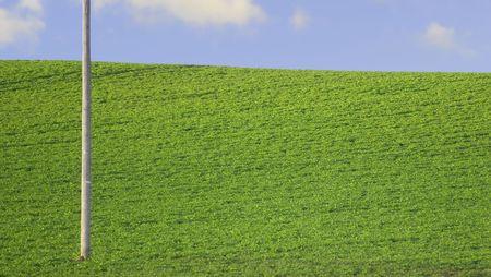 perfect green farmland and blue sky photo