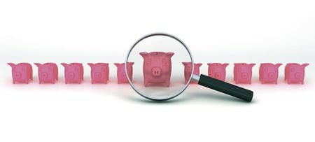 closely: A bunch of pigs investigated closely