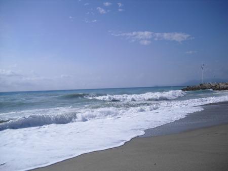wind force: tide