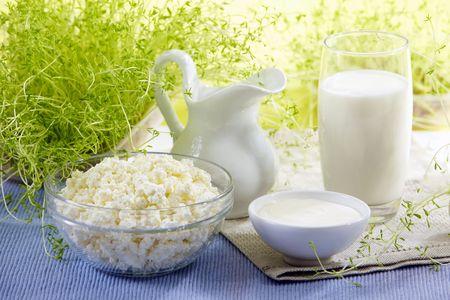 lacteos: productos de leche fresca
