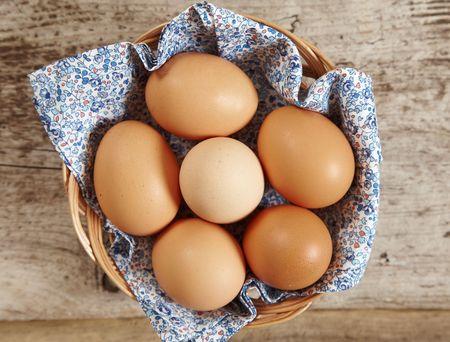 fresh brown eggs photo