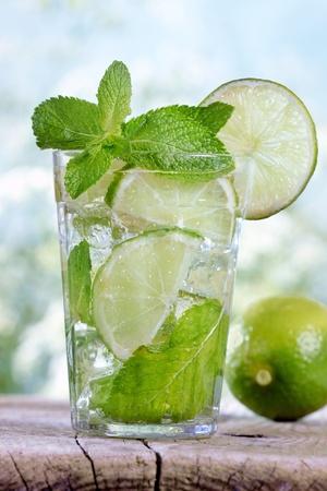 Mojito cocktail Stock Photo - 9677209