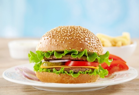 cheeseburger Stock Photo - 9943674