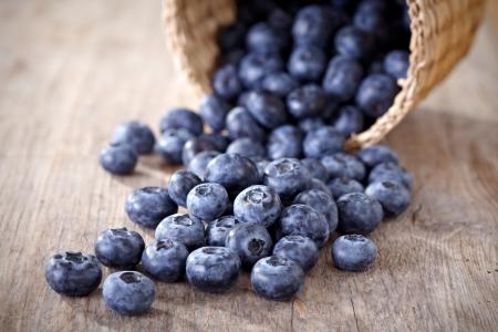 the blueberry: fresh blueberries Stock Photo