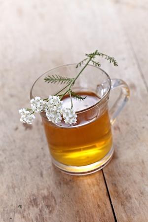 fresh herbal tea Stock Photo - 10744741