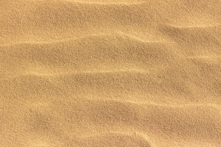 sand dune: sand background