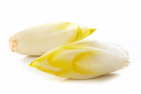 endivia: La achicoria fresca sobre fondo blanco