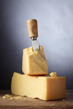 parmesan cheese: parmesan cheese