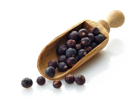 wooden scoop with dried juniper berries photo