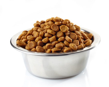 dog food: Bowl of Pets food isolated on white