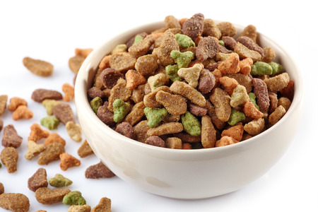 bowl of pets food on a white background