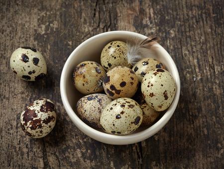 wachteleier: quail eggs in a white bowl Lizenzfreie Bilder
