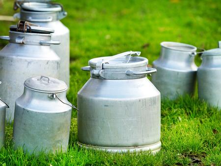 latte fresco: latte vaccino in vari contenitori metallici
