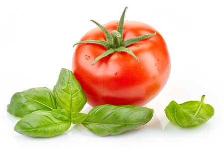 tomato: fresh tomato and basil leaf isolated on white background